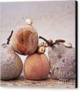 Rotten Pears And Apple. Canvas Print by Bernard Jaubert