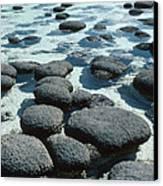 Stromatolites Canvas Print by Georgette Douwma