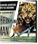 The Incredible Shrinking Man, 1957 Canvas Print by Everett