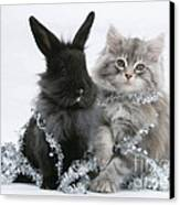 Kitten And Rabbit Getting Into Tinsel Canvas Print