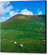 Slea Head, Dingle Peninsula, Co Kerry Canvas Print by The Irish Image Collection