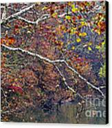 Fall Along West Fork River Canvas Print