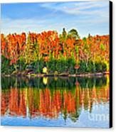 Fall Forest Reflections Canvas Print by Elena Elisseeva