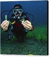 Invasive Seaweed Control Canvas Print