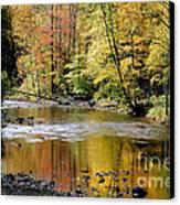Williams River Autumn Canvas Print