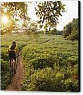 A Bicyclist Rides On A Path Canvas Print by Skip Brown