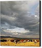 A Cloud-filled Sky Over A Yakima Valley Canvas Print by Sisse Brimberg