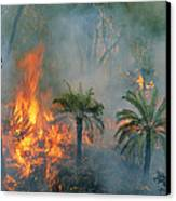 A Controlled Fire Helps Prevent Canvas Print by Randy Olson