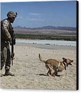A Dog Handler Conducts Improvised Canvas Print by Stocktrek Images
