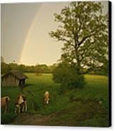 A Double Rainbow Arcs Over A Field Canvas Print
