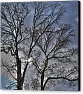 A Fall Sky Canvas Print by David Bearden