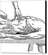 A Handbook Of Morbid Anatomy Canvas Print by Science Source