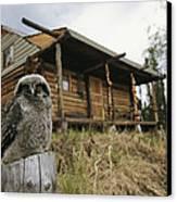 A Hawk Owl Sits On A Stump Near A Log Canvas Print
