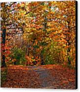 A Hikers Dream Canvas Print by James Hammen