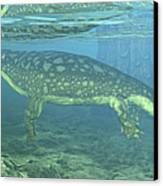 A Late Devonian Period Ichthyostega Canvas Print