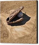 A League Of The Own Canvas Print