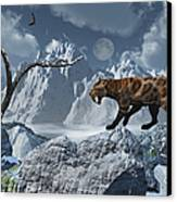 A Lone Sabre-toothed Tiger In A Cold Canvas Print by Mark Stevenson