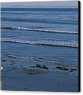 A Longboard Surfer Watches The Surf Canvas Print by Rich Reid