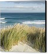 A Scenic Hillside Of The Beach Canvas Print by Bill Hatcher