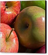 A Variety Of Apples Canvas Print