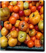 A Variety Of Fresh Tomatoes - 5d17812 Canvas Print