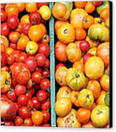 A Variety Of Fresh Tomatoes - 5d17904-long Canvas Print by Wingsdomain Art and Photography