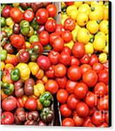 A Variety Of Fresh Tomatoes Artichokes And Celeries - 5d17901-long Canvas Print by Wingsdomain Art and Photography