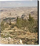 A View Of Olive Trees And Moses Canvas Print