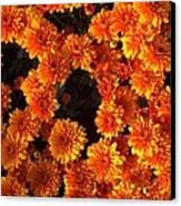 Ablaze Canvas Print by Elizabeth Sullivan