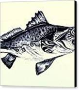 Abstract Speckled Trout Canvas Print by J Vincent Scarpace