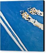 Adidas Canvas Print by Florian Divi