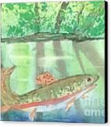 Adirondack Reflections Canvas Print