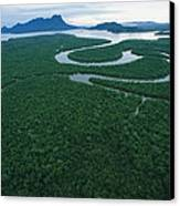 Aerial View Of The Salak River. Mount Canvas Print by Tim Laman