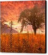 Aflame Canvas Print by Debra and Dave Vanderlaan