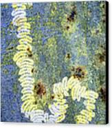 Algae Canvas Print by Dr Keith Wheeler