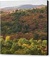 Algonquin In Autumn Canvas Print by Cale Best