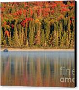Algonquin Reflections Canvas Print by Chris Hill