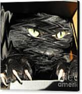 Alice's Cat Canvas Print by Rebecca Margraf