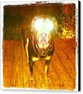 Alien Dog Canvas Print