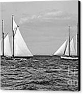 America's Cup Contenders Idler And Hildegarde 1901 Bw Canvas Print by Padre Art