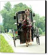 Amish Buggy On The Road Canvas Print