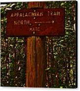 Appalachian Trail Canvas Print by Sarah Buechler