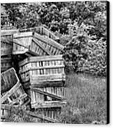 Apple Crate Bw Canvas Print by JC Findley