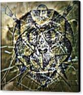 Arachnids Canvas Print by Paulo Zerbato