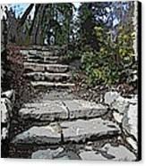Arboretum Stairway Canvas Print by Tim Allen
