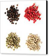 Assorted Peppercorns Canvas Print