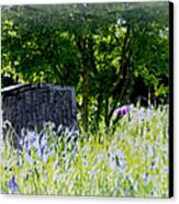 At Rest Canvas Print by Marilyn Wilson