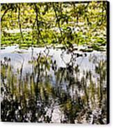 August Reflections Canvas Print by Rachel Cohen