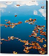 Autumn - 3 Canvas Print by Okan YILMAZ