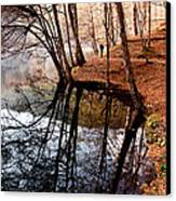 Autumn - 4 Canvas Print by Okan YILMAZ